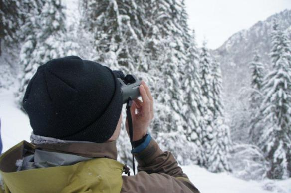 Swarovski Optik in action