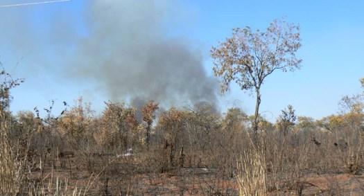 bushfire1