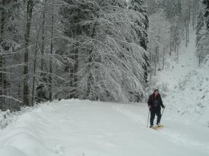 Katie in the white wilderness