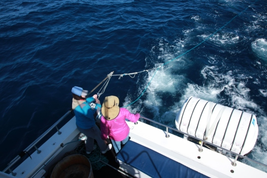 Deploying the hydrophone