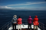 Some of the team on lookout (taken by Craig Turner)