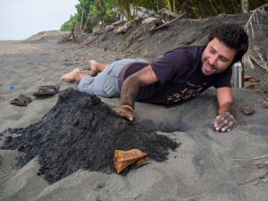 Keiner digging a nest