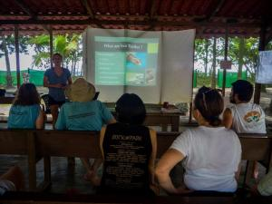 Sea turtle ecology lecture