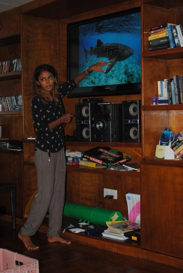 Iru explaining whale sharks