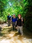 Jungle survey