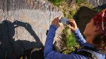 Gravierte Felsbilder - Petroglyphen genannt - finden sich überall in den Hochtälern rund ums Basecamp