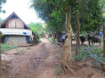 village-base-2016-8